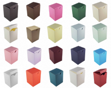 Tall Rectangle Favour Boxes